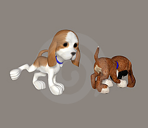 Puppy Stock Images - Image: 6580744