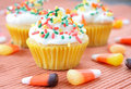 Fall Cupcakes Royalty Free Stock Image