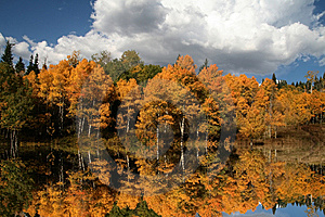 Fall Reflections Stock Photos - Image: 6591233