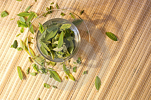 Green Tea Freshness Stock Images - Image: 6592114
