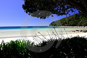 Golden Beach Abel Tasman Royalty Free Stock Photos - Image: 6594748
