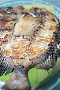 Grilled Seafood Stock Image - Image: 6596751