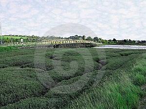 Coastal Estuary Stock Images - Image: 6600234