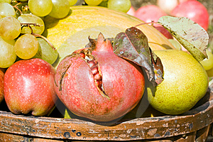 Fruits Harvest Royalty Free Stock Photo - Image: 6605295