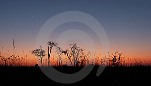 The Sky Color Before Sunrise. Royalty Free Stock Photos - Image: 6606908