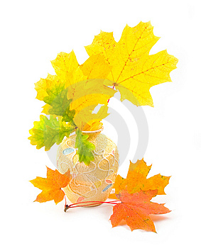 Bouquet From Yellow Autumn Branches Stock Images - Image: 6623414