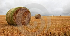 Wheat Pack Royalty Free Stock Photo - Image: 6626465