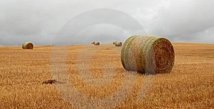 Wheat Pack Royalty Free Stock Photography - Image: 6626517