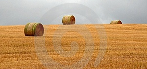 Wheat Pack Royalty Free Stock Photos - Image: 6626528