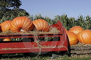 Pumpkins On Red Farm Wagon Royalty Free Stock Image - Image: 6633236