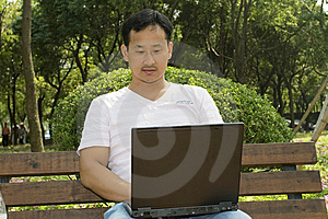 Man Using A Laptop In The Park Royalty Free Stock Images - Image: 6633459