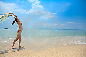 Woman Having Fun At The Beach Royalty Free Stock Images - Image: 6633919
