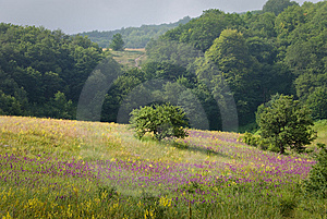 Crimea Nature Stock Photo - Image: 6637950