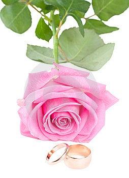 Wedding Concept Stock Photo - Image: 6638910