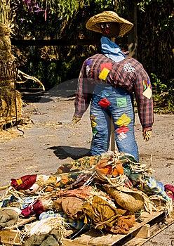 Large Straw Woman Stock Photos - Image: 6647023