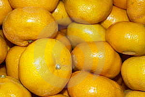 Oranges Royalty Free Stock Photography - Image: 6652287