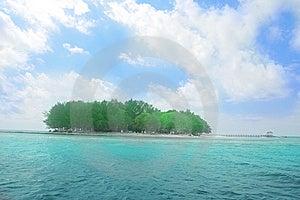 The Island Stock Image - Image: 6654711
