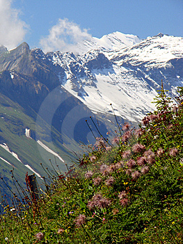 Beautiful Swiss Scenery Royalty Free Stock Photo - Image: 6663365