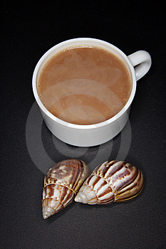 White Cup Stock Image - Image: 6663441