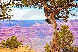 Grand Canyon Stock Photos - Image: 6677803