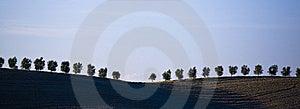 Tuscan Countryside Stock Photos - Image: 6681853