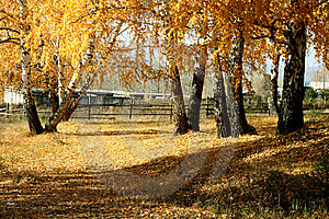 Mellow Autumn Stock Images - Image: 6689034