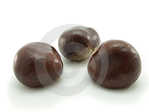 Chestnuts Isolated Stock Photos - Image: 6696833