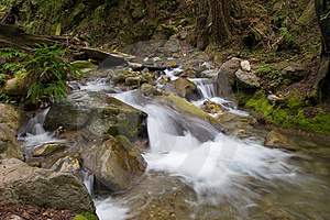Rocky Stream Royalty Free Stock Image - Image: 679026