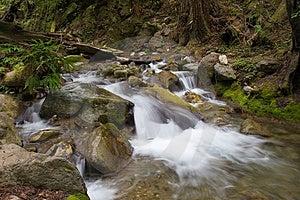 Rocky Stream Image libre de droits - Image: 679026