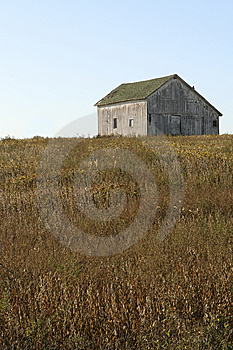 Weathered Royalty Free Stock Photos - Image: 6708318