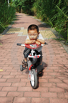 The Naughty Boy On A Bicycle Royalty Free Stock Photo - Image: 6715115