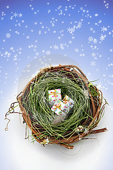 Nature's Holiday Presents Stock Image - Image: 6720421