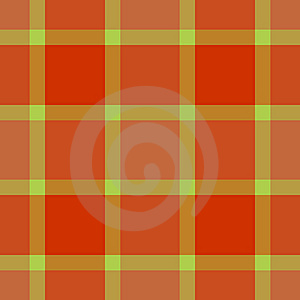 Modern Fashion Plaid Royalty Free Stock Photography - Image: 6722547