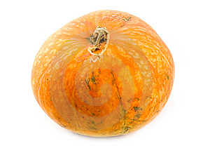 Ripe And Useful Pumpkin Royalty Free Stock Photos - Image: 6724158