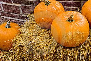 Straw An Pumpkins Royalty Free Stock Images - Image: 6725529