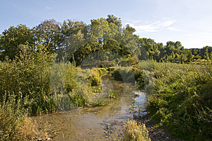 Little Creek Royalty Free Stock Photos - Image: 6765568