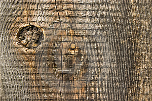 Old  Wood Texture. Stock Images - Image: 6765844