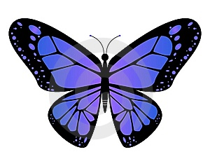 Violet Butterfly Stock Images - Image: 6779444