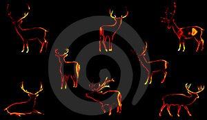 Christmas Deers Stock Photo - Image: 6789880