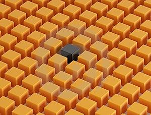 Individuality Stock Image - Image: 6790881