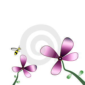 Flower  Bee Stock Photos - Image: 6795993