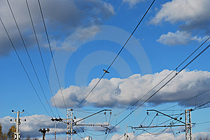 On Wire Stock Photo - Image: 6797650