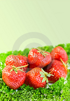 Strawberries Background Stock Images - Image: 6803944