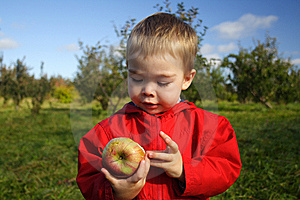 Eating An Apple Royalty Free Stock Photography - Image: 6817037