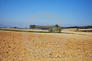 Barren Farmland Stock Photo - Image: 6833430