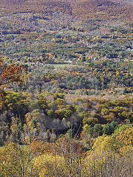Valley Foliage Stock Photos - Image: 6834593