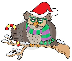 Owl In Christmas Outfit Royalty Free Stock Image - Image: 6841096