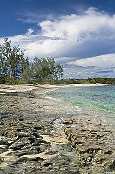 Tropical Shoreline Stock Image - Image: 6844781