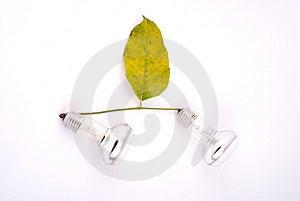 Energy Saving Concept Stock Photo - Image: 6848150