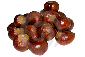 Chestnuts Stock Image - Image: 6856291